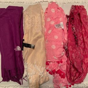 Bundle of 4 Scarves: North Face, WHBM, Charming C